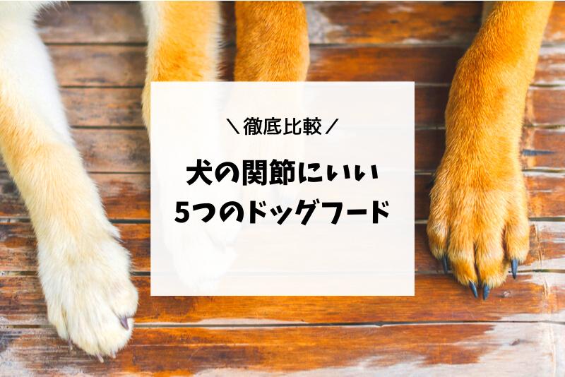 犬の関節にいいドッグフード5つを徹底比較【シニア犬や関節炎に〇】