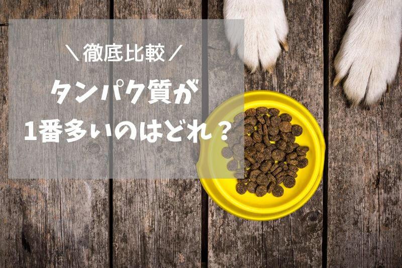 犬 タンパク質