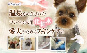 アトピーなどの皮膚病におすすめの犬用保湿スプレー「アヴァンス」