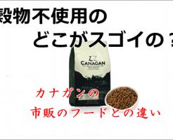 カナガン 穀物不使用
