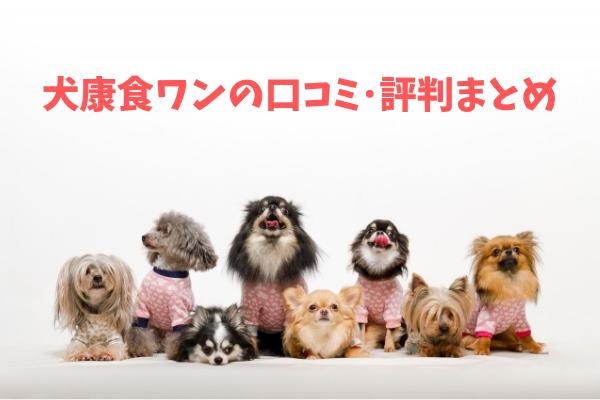 犬康食ワンプレミアムの口コミ評判