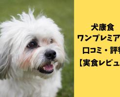 【必読】犬康食ワンの副作用のウソ・ホント|悪い口コミやデメリット
