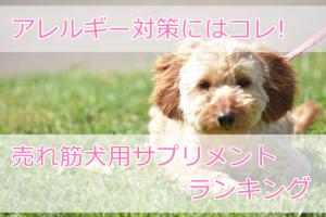 価格で選ぶ!犬のアレルギー対策サプリメントランキング