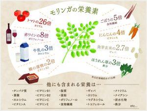モリンガの栄養素の画像
