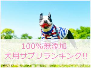 犬用サプリの無添加ランキング