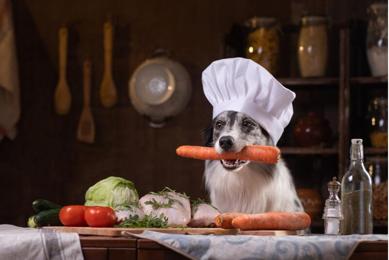 食材をくわえるコック姿の犬
