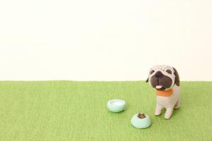 エサを待つ犬の画像