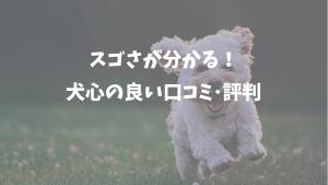 犬心の良い口コミ評判