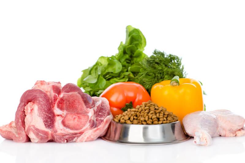 新鮮な食材とドッグフードの画像