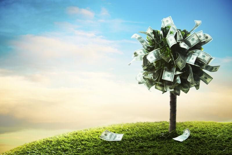 コスパが良い、お金のなる木