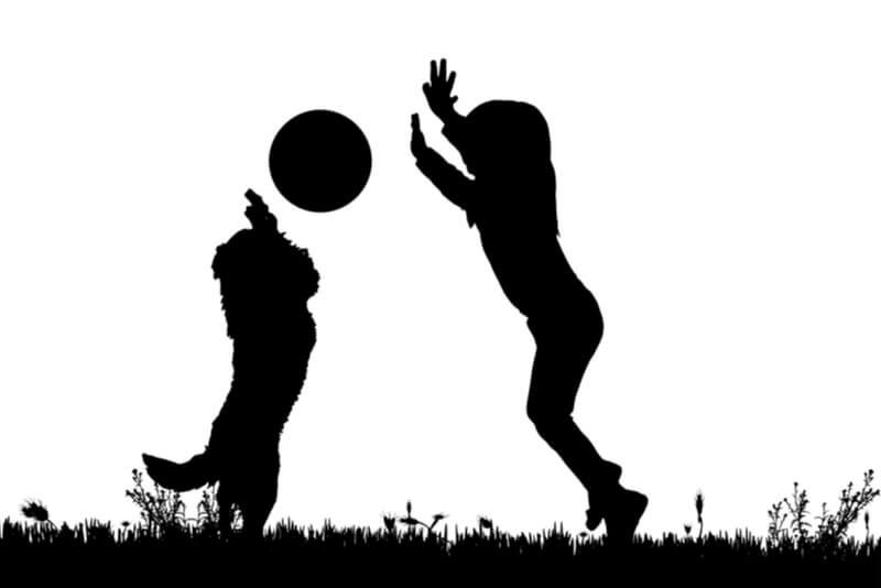 女の子と遊ぶ小型犬のシルエット