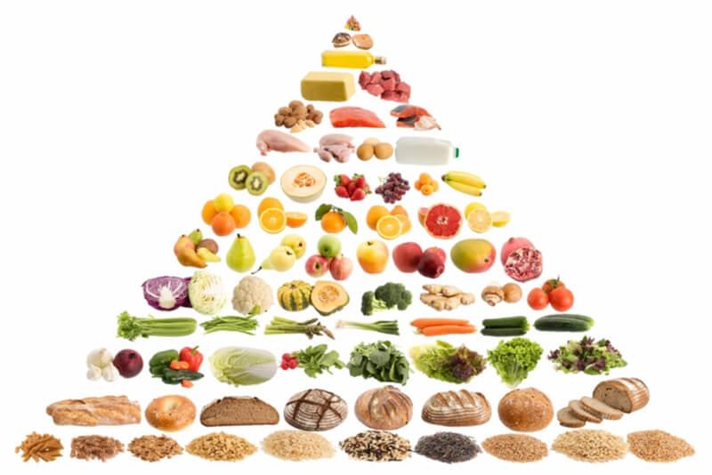 食物ピラミッド