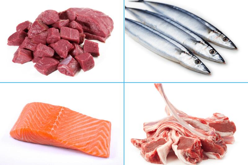 犬がアレルギーになりにくい食材、鹿肉、ラム肉、魚、サーモン