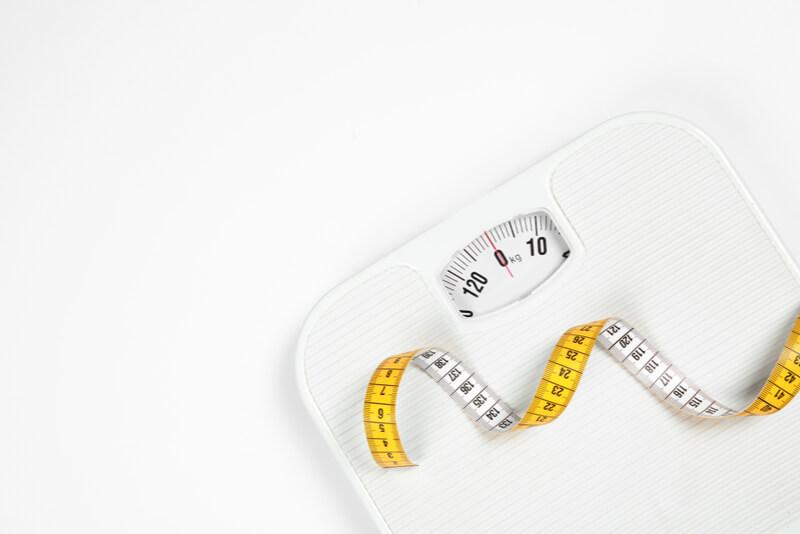 柴犬の適正体重を知るための体重計