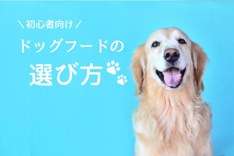 ドッグフードの選び方|愛犬にピッタリが見つかる初心者向けガイド