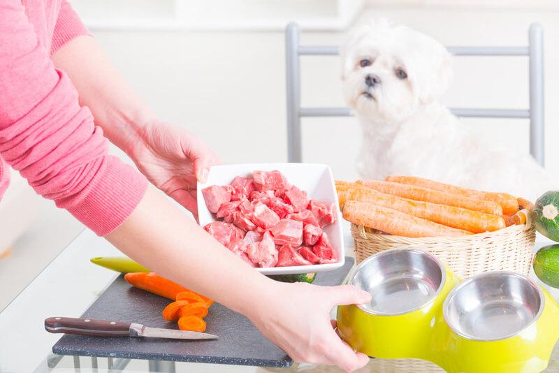 キッチンの食材をながめる犬
