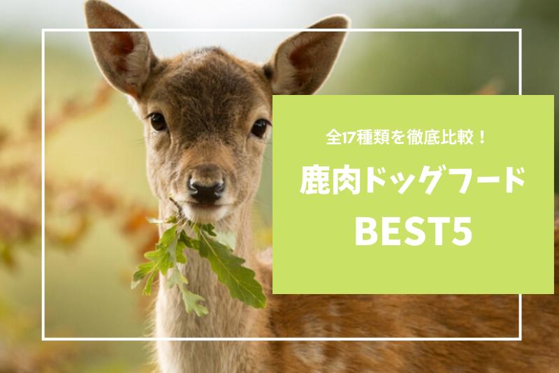 【全17種類比較】鹿肉ドッグフードランキングBEST5|口コミ評判の良いものは?