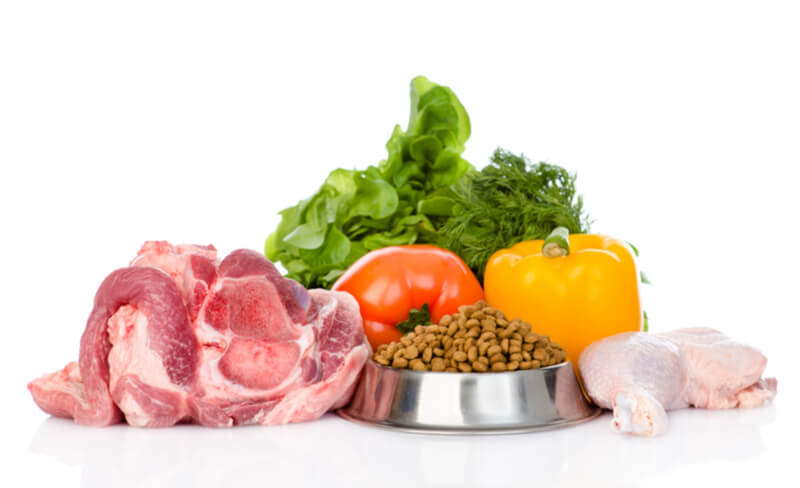 ドッグフードと野菜とお肉